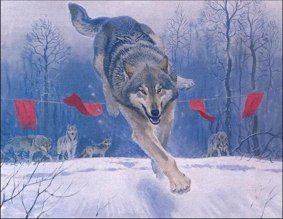 ...охоту на животных.  Категория.
